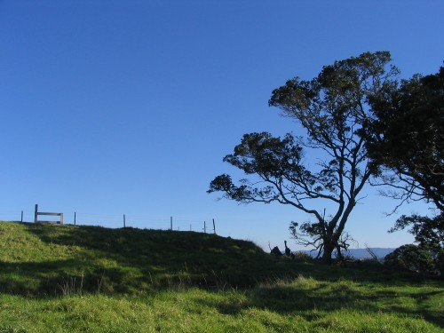 Mt Hobson, Auckland